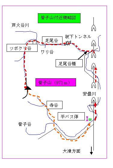 皆子山付近概略図.JPG
